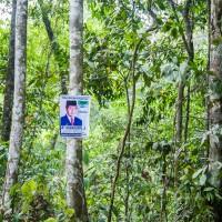 Wahlplakat im Wald