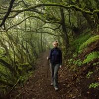 Im Nebelwald bei El Cedro
