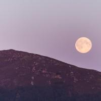 Mond über der Vogelinsel Runde